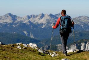 Planinec-hoja-je-zdrava
